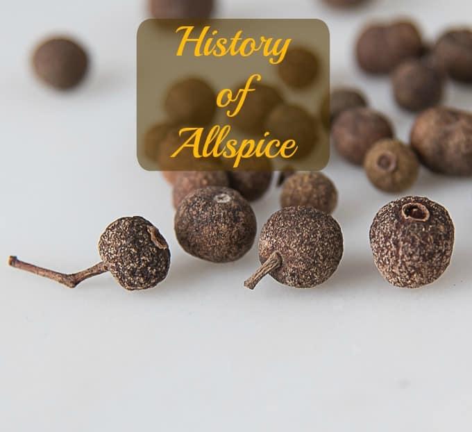 History of Allspice   ethnicspoon.com