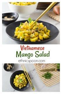 Vietnamese mango salad: A simple salad consisting of diced mango, rice vinegar, shallots, cilantro, fish sauce, peanuts, lime juice and palm sugar. The flavors in this salad have a balance of sweet, tart, bitter and salty. The chopped peanuts give it a nice crunch! #vietnamese #mangosalad #healthyrecipe #salad #fruitsalad #asiansalad | ethnicspoon.com